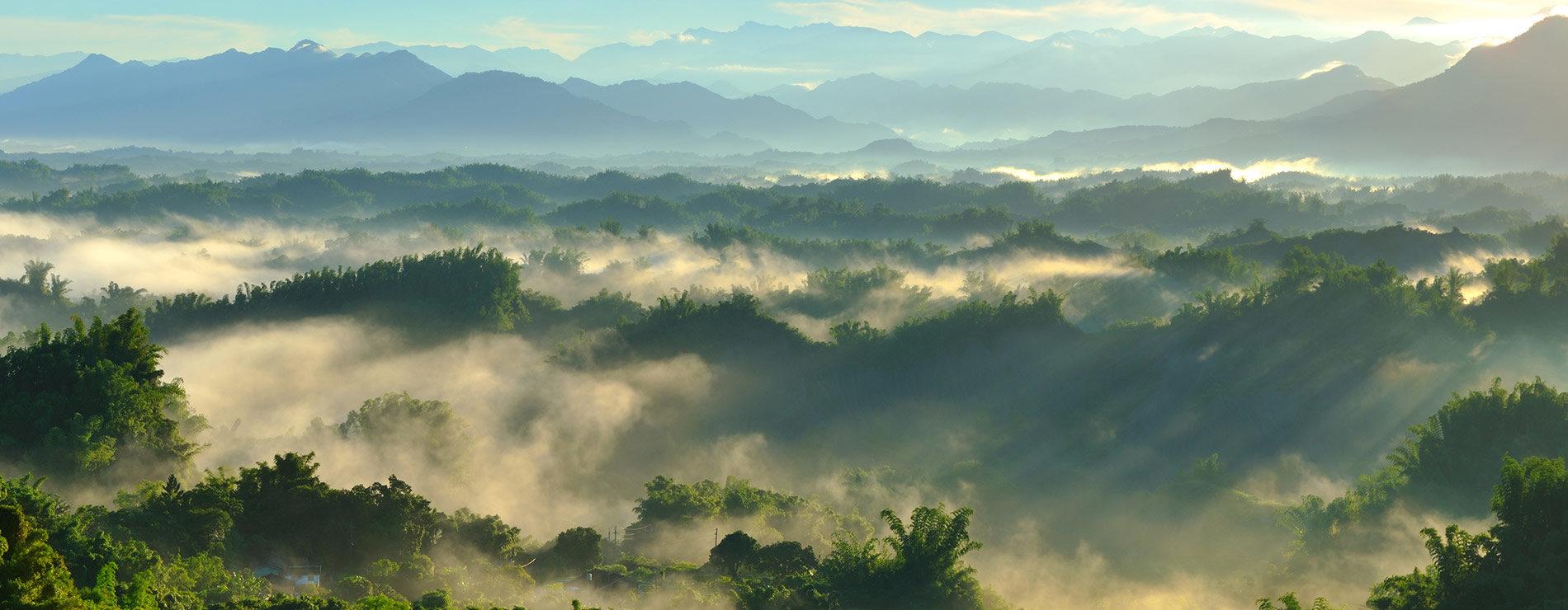 Därför ska du resa till Borneo
